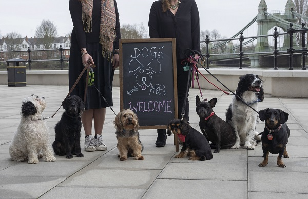 Dogs welcome at Riverside Studios' Cafe and Bar