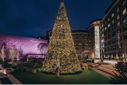Designer Christmas Tree for Television Centre